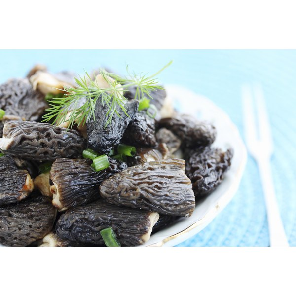 Plate of morel mushrooms