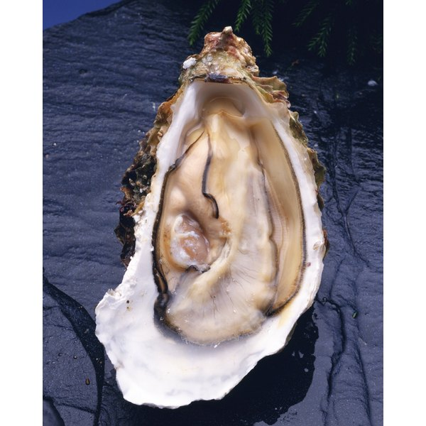 Oysters are high in zinc.