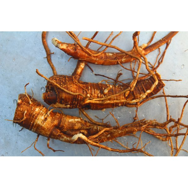 Ginsana Energy is made from ginseng roots, a plant often used as a caffeine substitute.