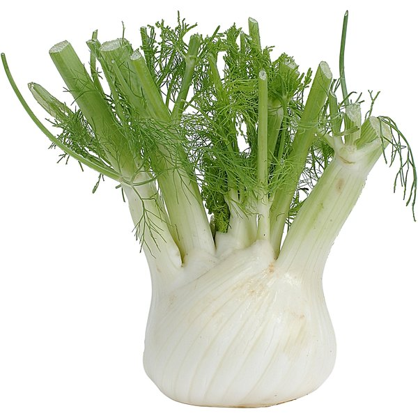 Although the bulb is most often called for in recipes, the entire fennel plant is edible.