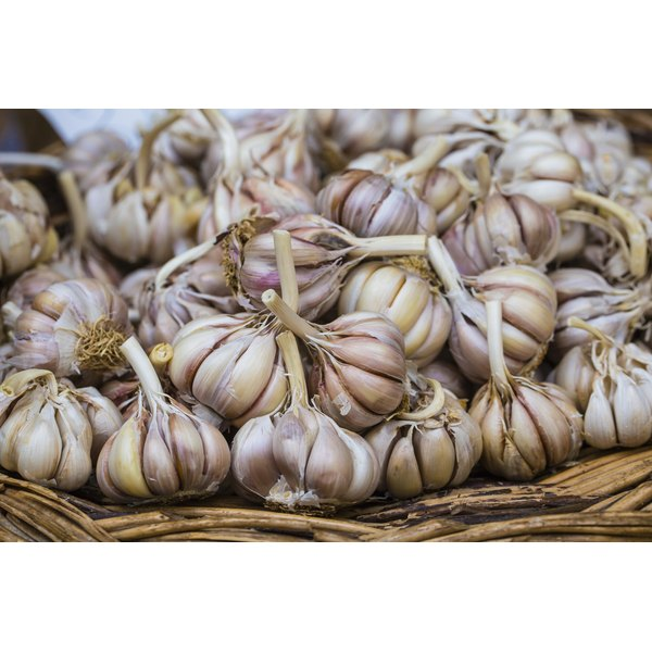 Garlic for sale at a market.