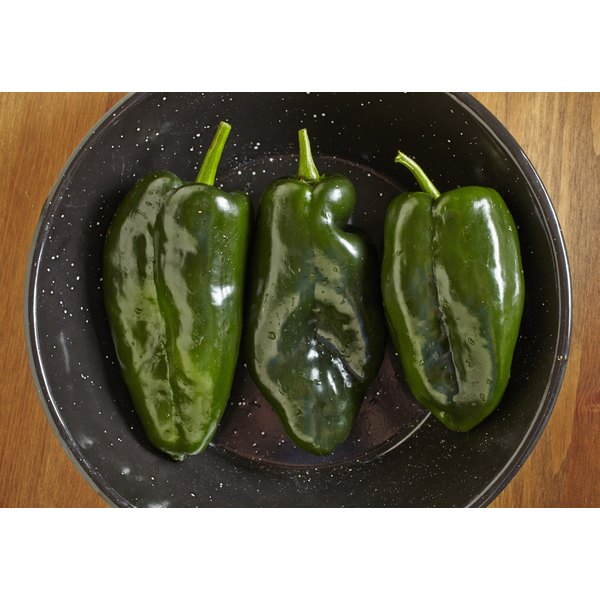 A dish with three uncooked poblano peppers.