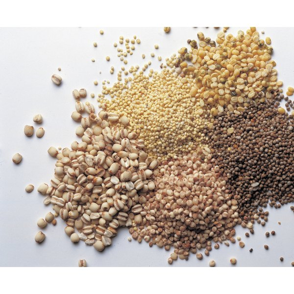 Common in the United States as birdseed, millet contains numerous health benefits.