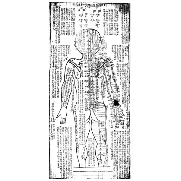 Ancient acupuncturists mapped the body's energy meridians.