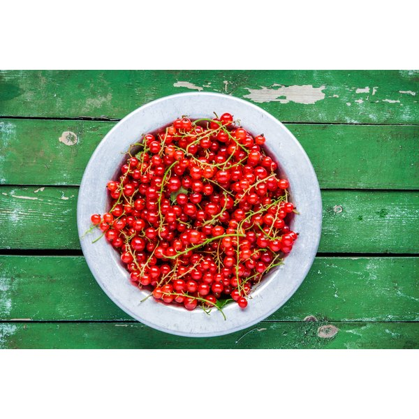 A large bowl of currants.