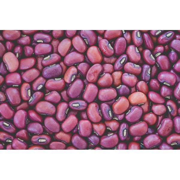 Dry azuki beans in a pile.