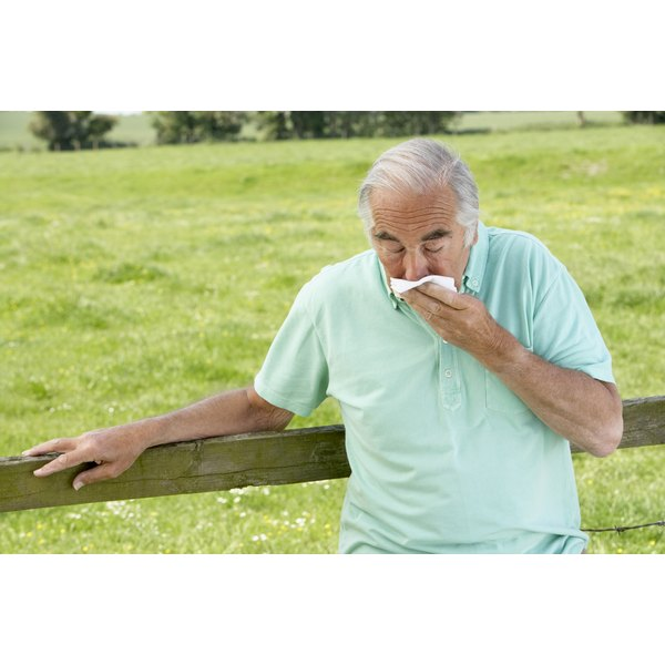 Elderly people may become seriously ill from a cold or the flu.
