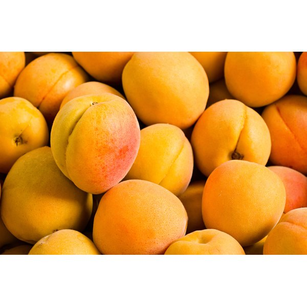 A close-up of fresh apricots.