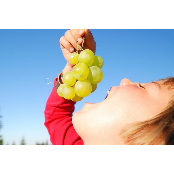 A child enjoys grapes while at a park.