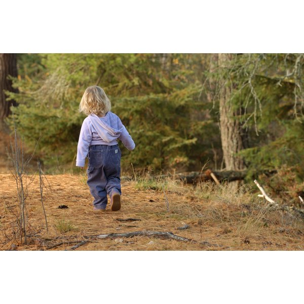 A toddler walks off into the woods.
