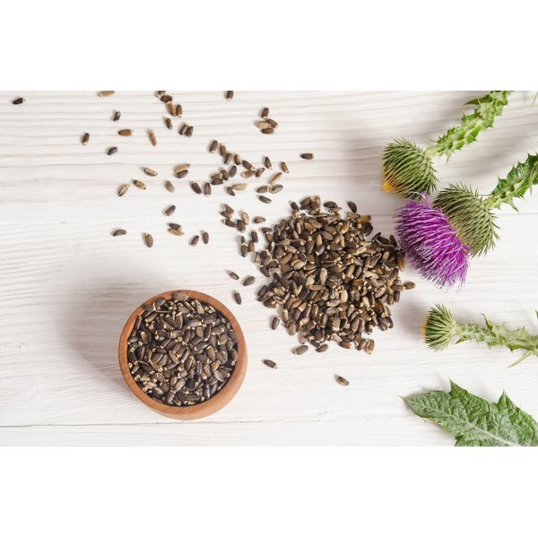There may be more more effective hair-growth ideas than milk thistle.