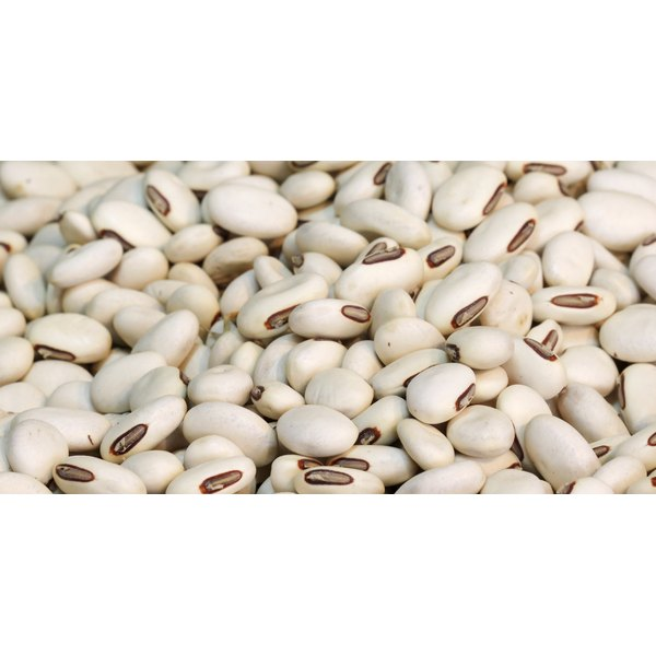 Navy beans are a nutritious source of protein and fiber.