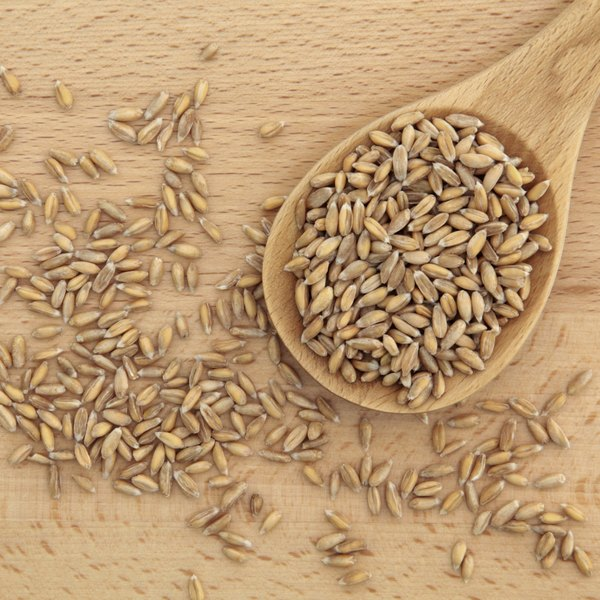 Spelt grains and spoon.