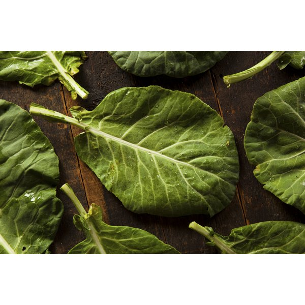 Raw, organic collard greens on a table.