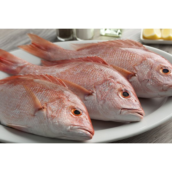 Red snapper has a characteristic iridescent red hue.