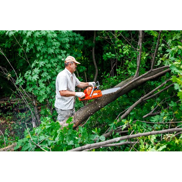 A man is chainsawing fallen tree limbs.