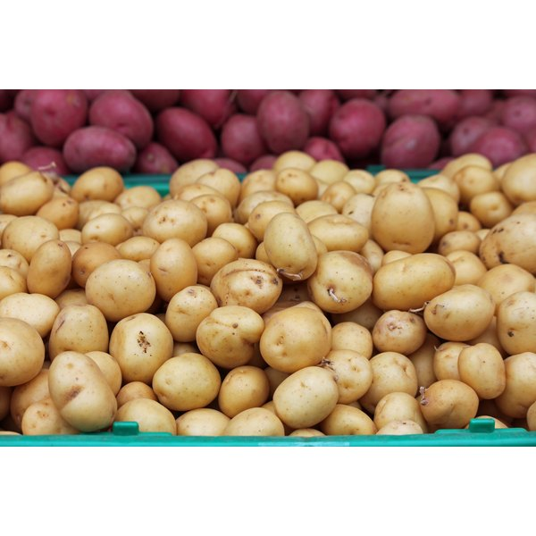 Young golden potatoes for sale at a farmers market.