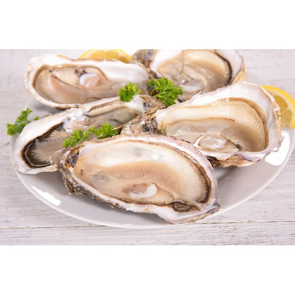 Oysters on in their shells.