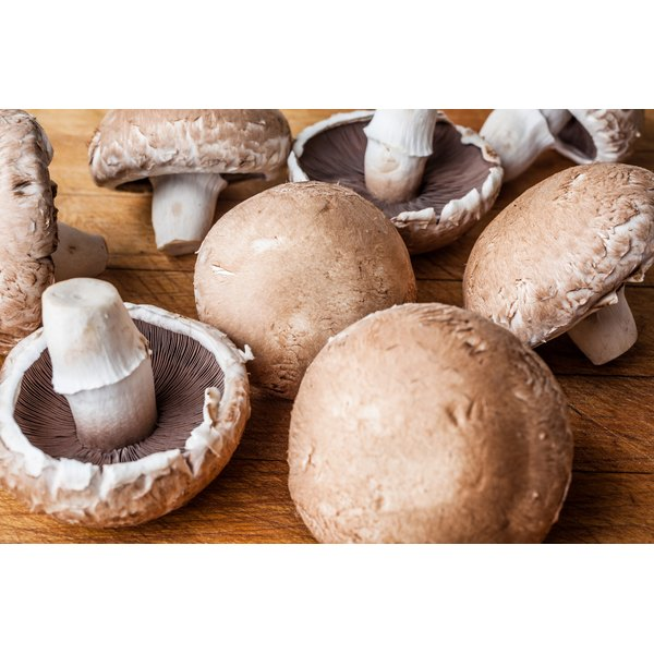 Large brown mushrooms are simply a larger version of crimini mushrooms.
