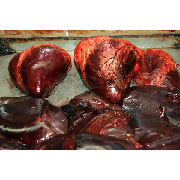 Pork kidneys shown during prep.