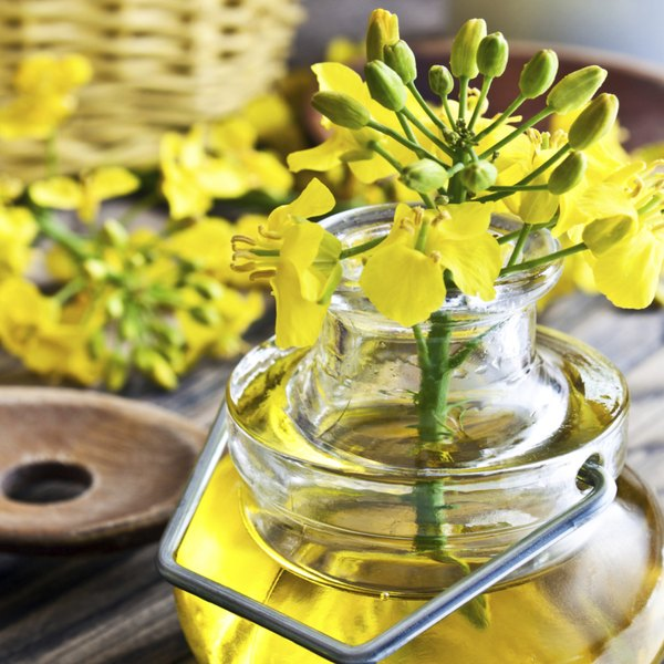 Rapeseed and oil.