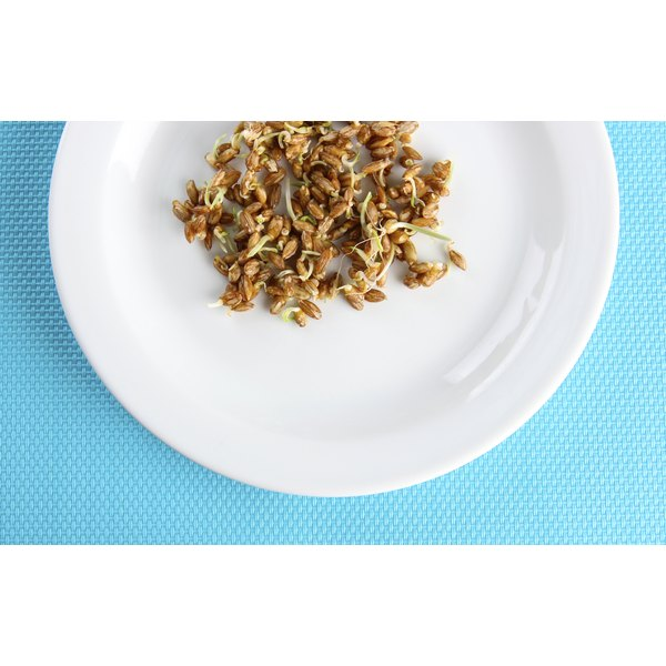 Wheat germ is the most nutritious part of wheat grains.