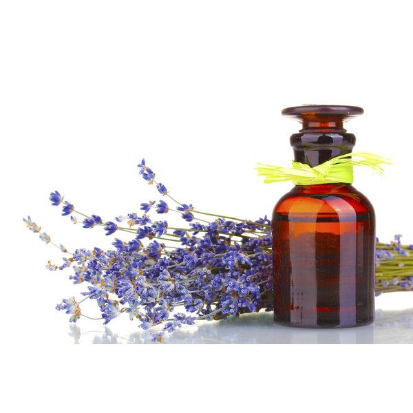 Lavender flowers with a bottle of lavender oil.