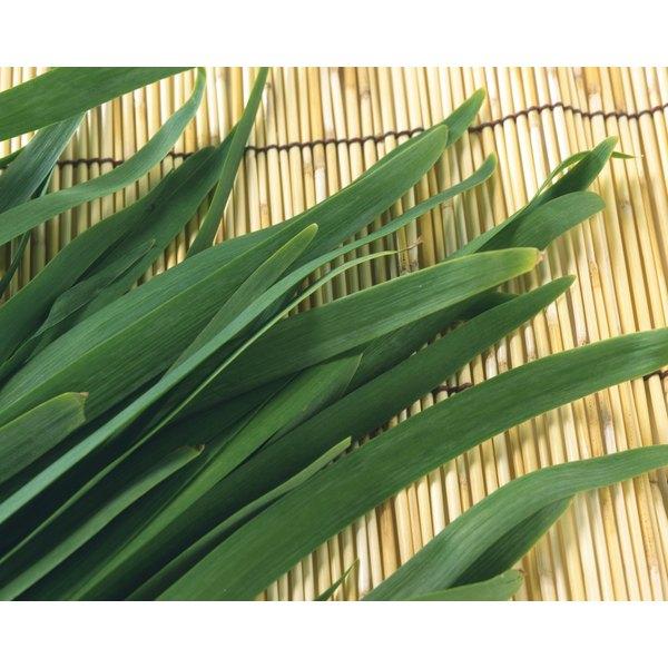 Leeks on a bamboo mat.