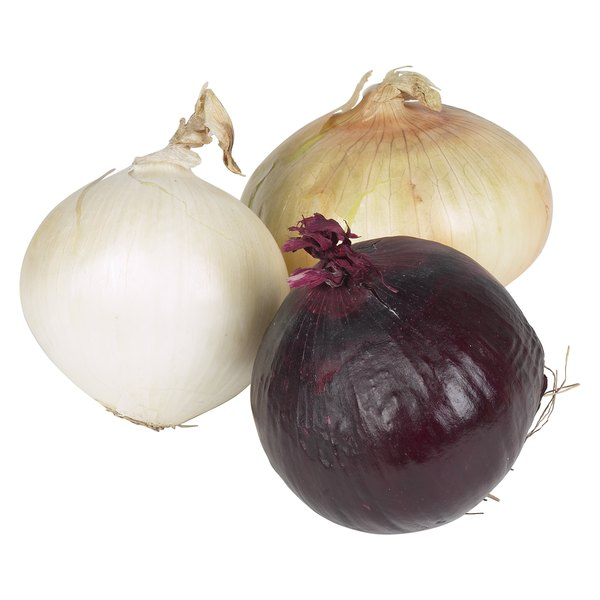 Onions are more than just garnish for hamburgers or steak.