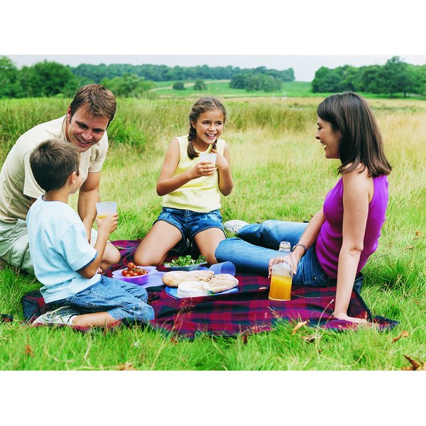 A family having a picnic in a field.