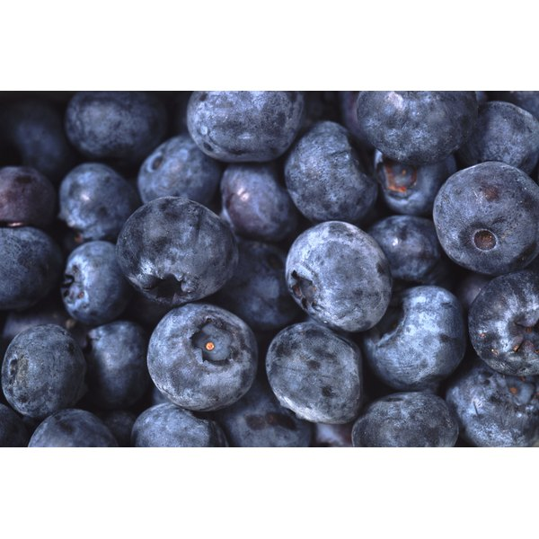 Blueberries are native to North America.