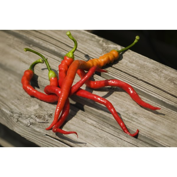 Capsaicin is the active ingredient in cayenne peppers.