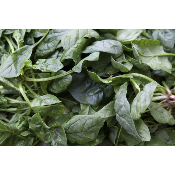 Spinach for sale at a market.