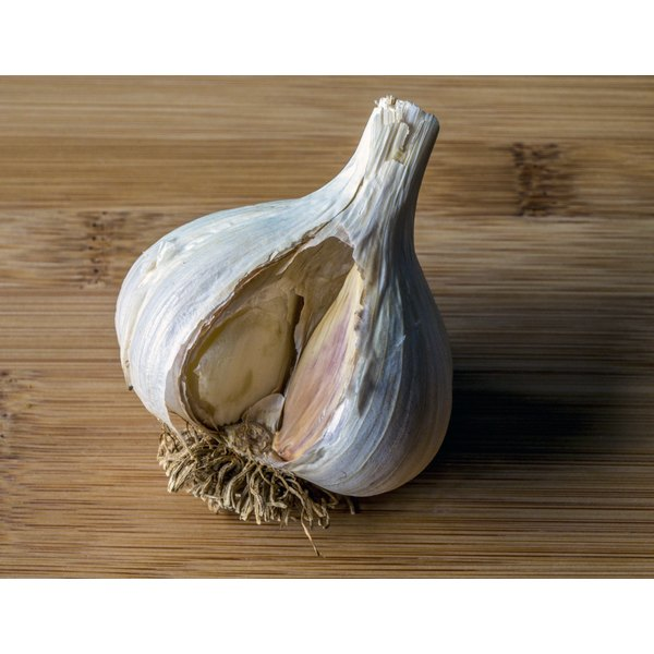 A head of garlic on a table.