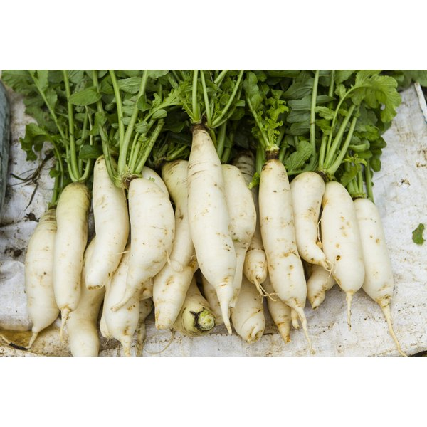 The flavor of daikon radishes is often compared to that of watercress.