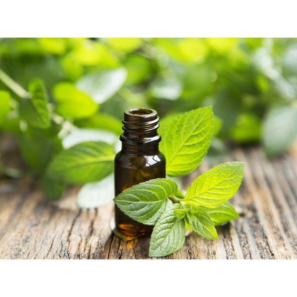 A bottle of peppermint extract on a table with fresh mint leaves.