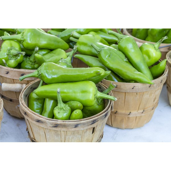 Bushels of green chiles in wooden baskets.