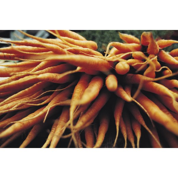 Carrots contain naturally occurring sucrose.
