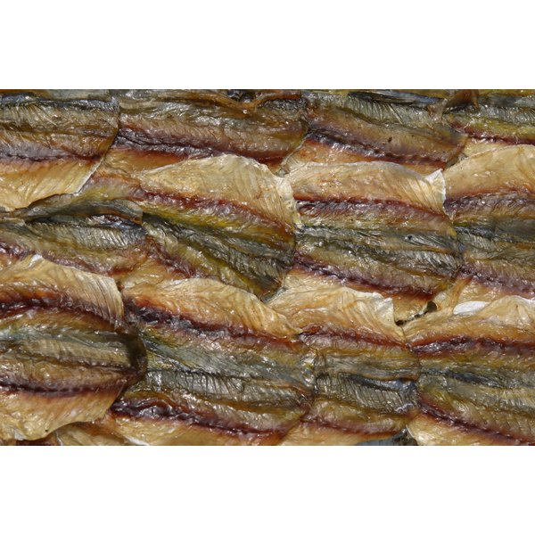 Anchovies contain a high concentration of omega-3 fatty acids.