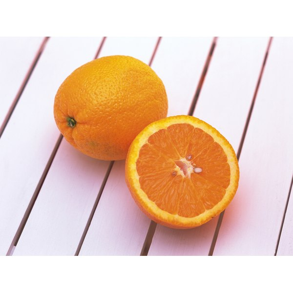 Oranges are one of many citrus species.