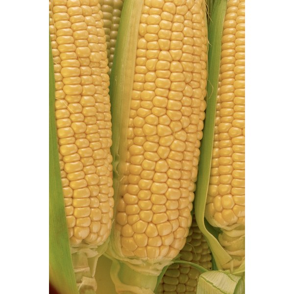Roasted corn is an easy preparation.