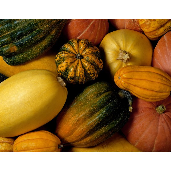 Spaghetti squash share their durability and tough skin with other winter squashes.