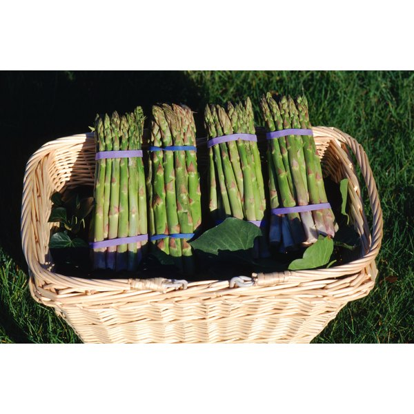 Asparagus is a natural source of fructooligosaccharides.