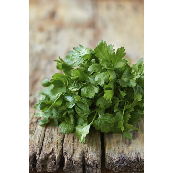Cilantro promotes digestive health in several ways.