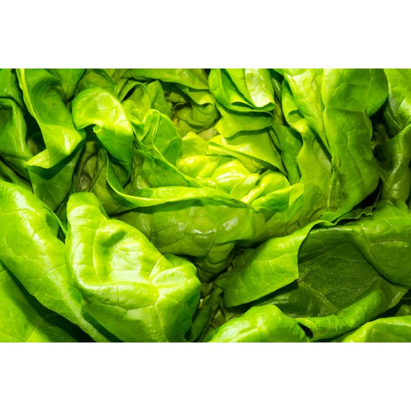Olive Garden's salads contain romaine lettuce.