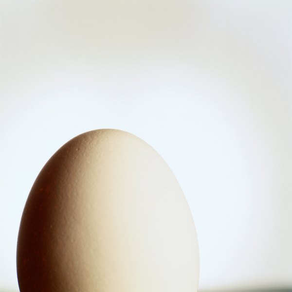 The egg has plenty of protein and other fat-burning benefits.