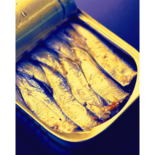 Sardines are smoked before being packed in oil for canning.