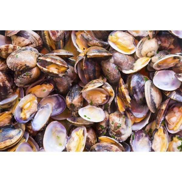 Clams are an iron-rich food.