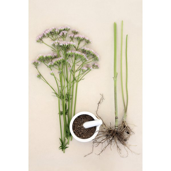 Herbs such as valerian may have a calming effect.