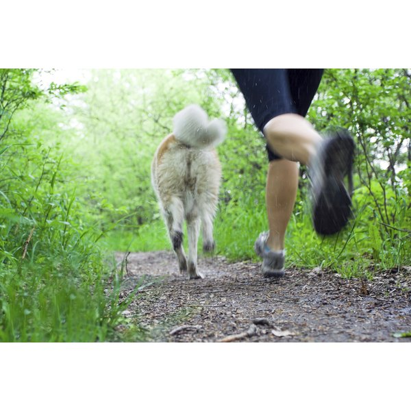 A woman takes a run on a trail in the woods with her dog.